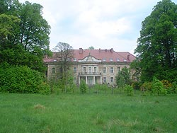 Maciejowiec w Karkonoszach